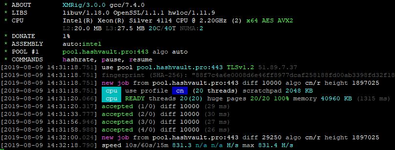 XMRig v5.5.0 RandomX NoFee